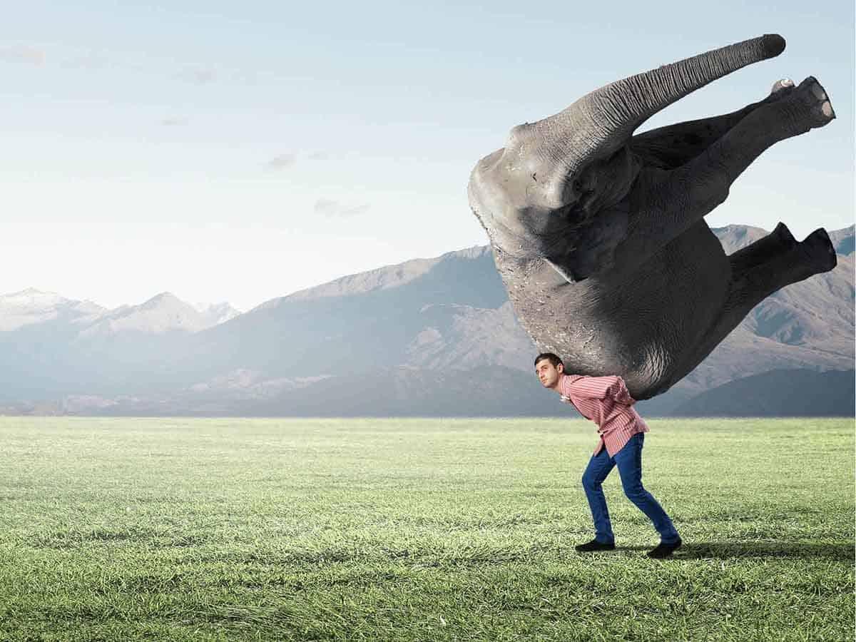 Menedżer niesie słonia na swoich plecach Business coaching